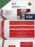 libro-blanco-cap-IX.pptx