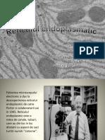 Reticulul (3).pptx