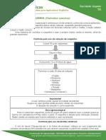 16 Controle de Vaquinha Diabrotica Speciosa