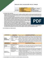 PROGRAMACION CURRICULAR ANUAL 2019 - 5° - FORMATO.docx