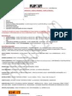 FlipAut 2010_ARTICULAÇÃO NATAL_ICAP_Ações Propostas e Colaboradores-Participantes