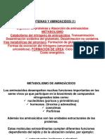 Primary%3Abluetooth%2FMetabolismo de Proteinas Degradacion