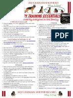 GSD-Puppy-Training-Essentials.pdf