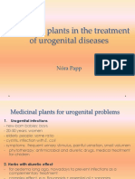 Medicinal_plants_used_for_urogenital_diseases.pdf
