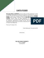 Carta Poder Para Electrificacion