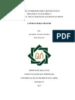 LaporanKP_Agung.pdf