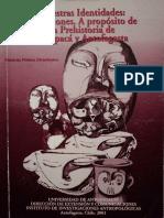 Núñez 2001 - Nuestras Identidades b