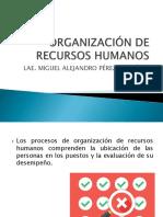 Organización  de Recursos Humanos