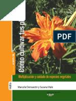 Como Cultivar Sus Plantas