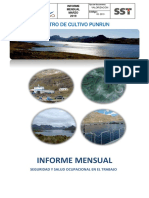 03 Informe Mensual Lancari Marzo 2019