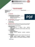 Analisis El Almohadon de Plumas