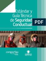 Estandar_y_Guia_Tecnica_de_Seguridad_Con.pdf