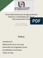 funcionvisual-140912220742-phpapp02
