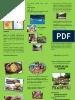 reginsanmartntrptico-130629222930-phpapp01.pdf