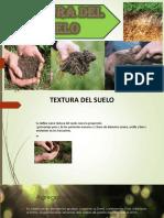 Textura Del Suelo-exposicion Miriamm