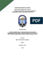 tesis perfil bioquimico huancayo