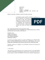 Demanda de Accion de Amparo - Custodio Olsen Quispe Condori (2)