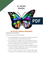 Reino Animal Cuestionarios BiologíaGeneral