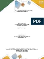 Fase-6 Solidaridad Bioética Placido