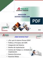 Sistema Pemex Sspa 2014