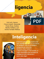 Inteligencia Expo