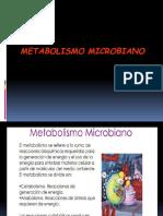 6. metabolismo ferment - resp 2.ppt
