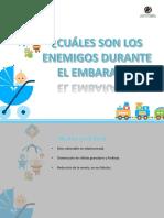 Diapositivas Riesgos Del Emabrazo