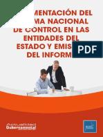 Implementacion Sistema Nacional de Control