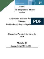 ÁlvarezMéndez Salomon M16S2 Elciclocelular