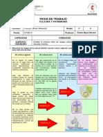 fichadetrabajoculturaypatrimonio-130828231239-phpapp01.pdf