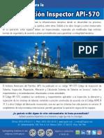 Folleto-API570-IT03.pdf