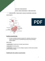 Pm Del Sistema Digestivo