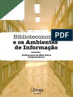e Book Biblioteconomia e Os Ambientes de Informacao