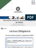 Clase 19 Inervacion y Topografia de MMSS_DBIO1050