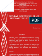 Roturas de Tendones