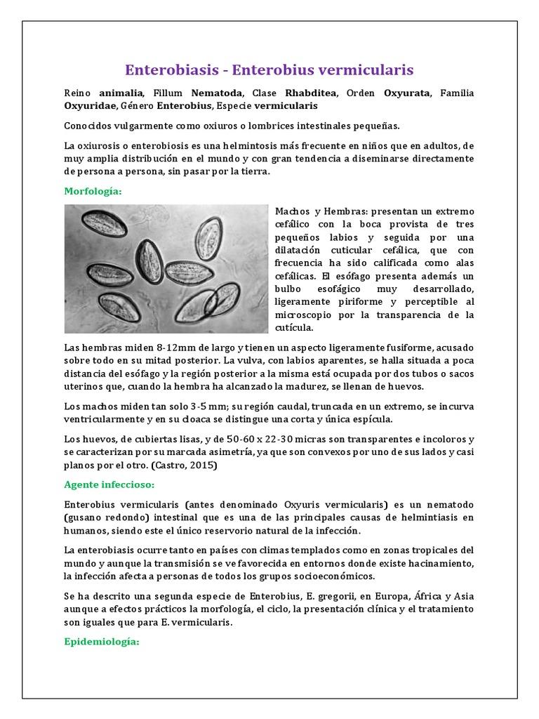 papillomavírus vakcina felfedezése magas kockázatú hpv rák tünetei