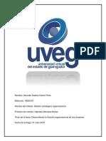 Desarrollando la filosofía organizacional de una empresa.pdf
