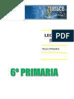 lecturaiibim-170403035623.pdf