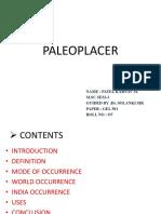 Paleo Placer