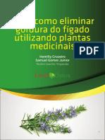 Download 129084 E Book Liver Detox 2 4354043
