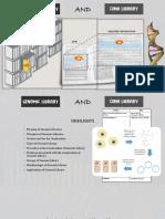 Genomic and cDNA Library