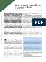 Lipid Bilayer Mediates Ion-channel Coope