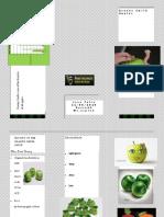 Jose Felix Apple Brochure