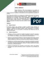 9.0 Plan de Manejo Ambiental 27 Jun 2109