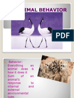 ANIMAL BEHAVIOR.pdf