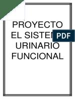 Proyecto El Sistema Urinario Funcional