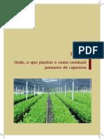 Cajueiro_Cap. 1_Clima, solo, nutricao mineral e adubação.pdf