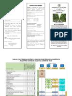 3-Triptico-SV.pdf