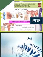 OBSTETRICIA III - EPO UNASAM