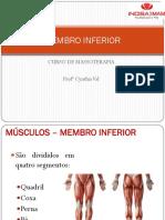 Aula 4. Membro Inferior (Músculos)
